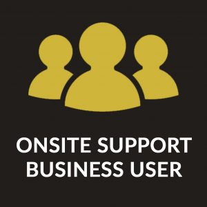 Business User Onsite IT Support