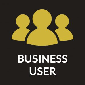 Business User IT Support