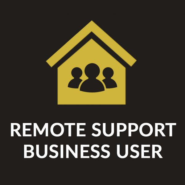 Remote IT Support - Business User